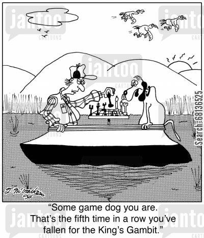 game dogs cartoon humor: 'Some game dog you are. That's the fifth time in a row you've fallen for the King's Gambit.'