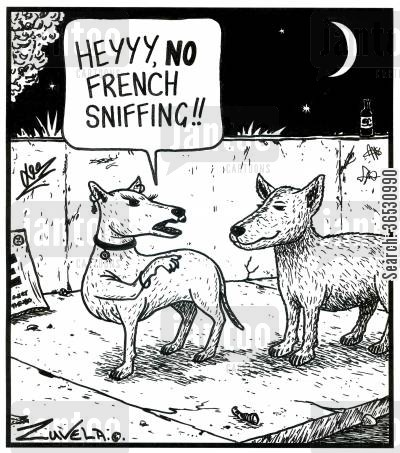 sniffs cartoon humor: 'Heyyy,NO French sniffing!!' (two dogs)