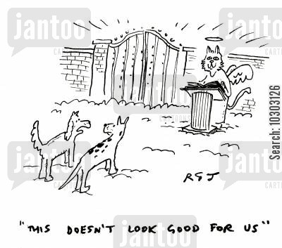 purgatory cartoon humor: 'This doesn't look good for us.'