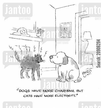 charisma cartoon humor: 'Dogs have more charisma but cats have more electricity.'