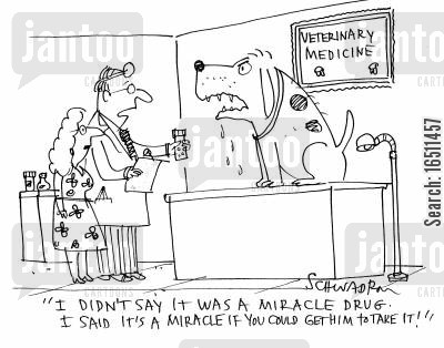 pet health cartoon humor: 'I didn't say it was a miracle drug. I said it's a miracle if you could get him to take it!'