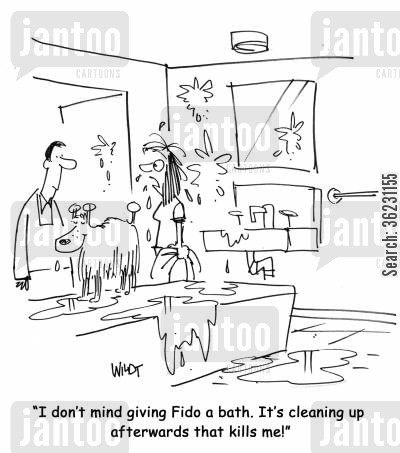 dog bath cartoon humor: I don't mind giving Fido a bath. It's cleaning up afterwards that kills me!