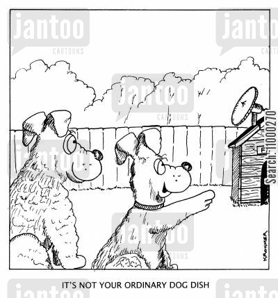 satellite television cartoon humor: 'It's not your ordinary dog dish.'