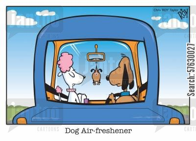 car journey cartoon humor: Dog Air-freshener.