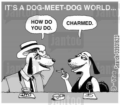 dog eat dog world cartoon humor: It's a dog meet dog world...