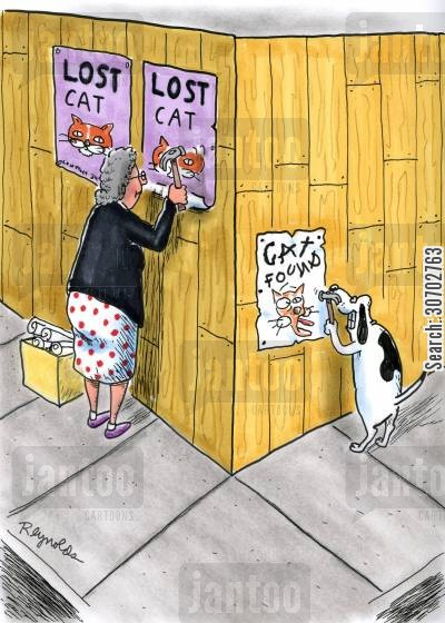 lost pets cartoon humor: Lost CatCat Found.