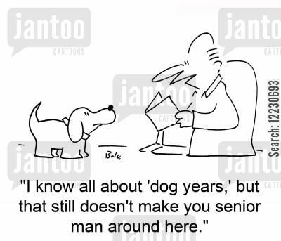 senior men cartoon humor: 'I know all about 'dog years,' but that still doesn't make you senior man around here.'