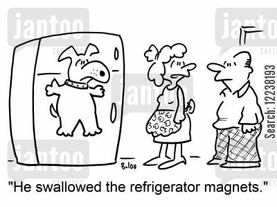 magnetism cartoon humor: 'He swallowed the refrigerator magnets.'