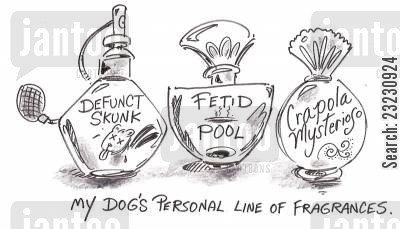 fragrances cartoon humor: My dog's personal line of fragrances.