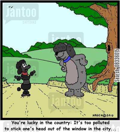 clean air cartoon humor: 'You're lucky in the country: It's too polluted to stick one's head out of the window in the city...'