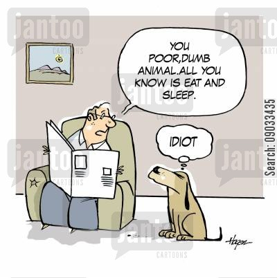 dogs life cartoon humor: 'You poor dumb animal, all you know is eat and sleep.'