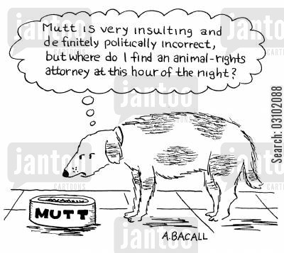 political correctness cartoon humor: 'Mutt is very insulting and definitely politically incorrect, but where do I find an animal rights attorney at this hour of the night?'