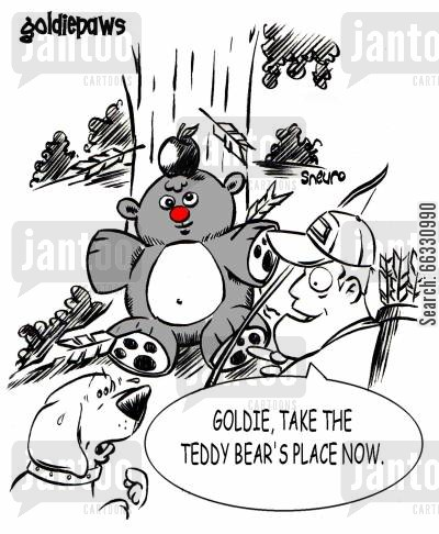pe towners cartoon humor: Goldie, take the teddy bear's place now.
