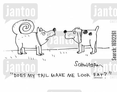 self image cartoon humor: 'Does my tail make me look fat?'