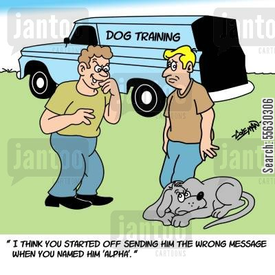 dog trainers cartoon humor: I think you started off sending him the wrong message when you named him Alpha.