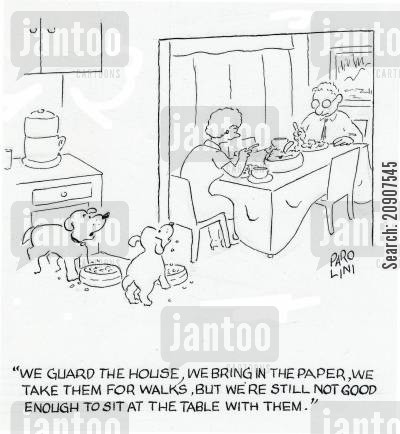 dog bowl cartoon humor: 'We guard the house, we bring in the paper, we take them for walks, but we're still not good enough to sit at the table with them.'