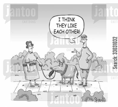 big dogs cartoon humor: 'I think they like each other.'