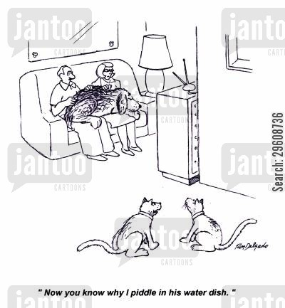 lapdogs cartoon humor: 'Now you know why I piddle in his water dish.'