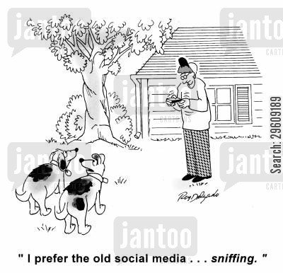 preferences cartoon humor: 'I prefer the old social media... sniffing.'