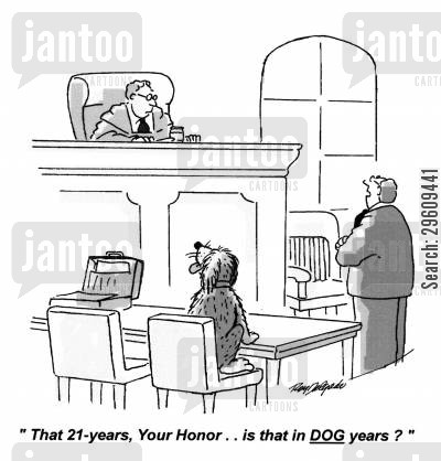 dog year cartoon humor: 'That 21 years, your Honor... is that in dog years?'