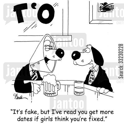 dog collar cartoon humor: 'It's fake, but I've read you get more dates if girls think you're fixed.'