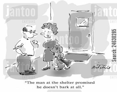 dogs shelter cartoon humor: 'The man at the shelter promised he doesn't bark at all.'