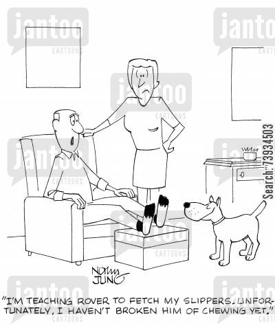 obedience training cartoon humor: 'I'm teaching rover to fetch my slippers. Unfortunately, I haven't broken him of chewing yet.'