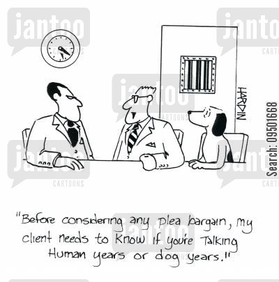 sentence cartoon humor: 'Before considering any plea bargain, my client needs to know if you're talking human years or dog years.'