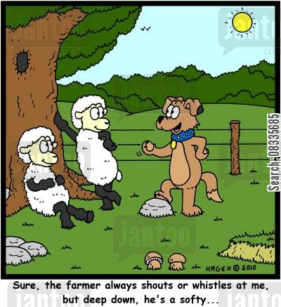 sheep dogs cartoon humor: 'Sure, the farmer always shouts or whistles at me, but deep down, he's a softy...'