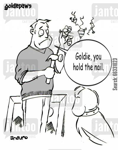 masters cartoon humor: Goldie, you hold the nail.