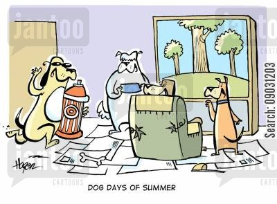 chilled out cartoon humor: Dog days of summer.