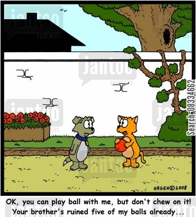 chewed cartoon humor: 'OK, you can play ball with me, but don't chew on it! Your brother's ruined five of my balls already...'