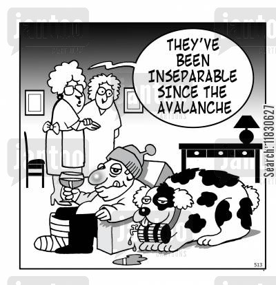 saint bernards cartoon humor: They've been inseperable since the avalanche.