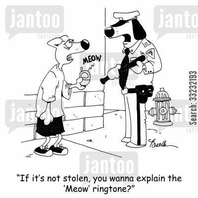dogs vs cats cartoon humor: 'If it's not stolen, you wanna explain the 'Meow' ringtone?'