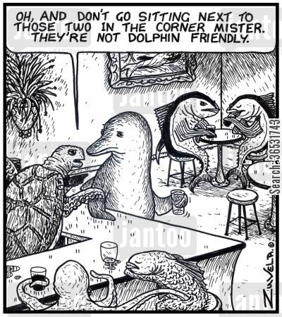 tuna cartoon humor: Turtle Bartender to a dolphin: 'Oh, and don't go sitting next to those two in the corner mister. They're not dolphin friendly.'