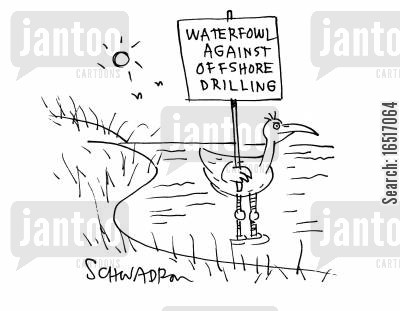 oil spills cartoon humor: Waterfowl Against Offshore Drilling.