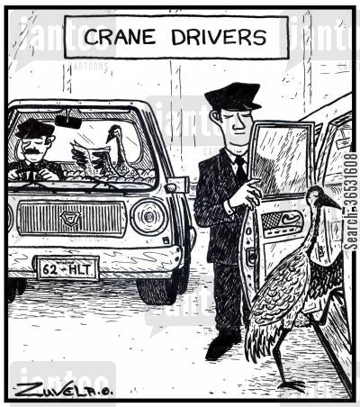 chauffeurs cartoon humor: Crane Drivers.