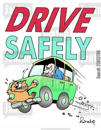 bad driving cartoon humor: Drive safely.