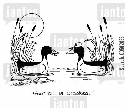 mallards cartoon humor: 'Your Bill is crooked.'