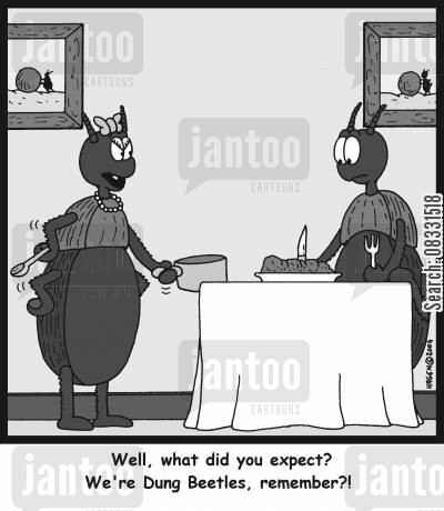 dung beetle cartoon humor: 'Well, what did you expect? We're Dung Beetles, remember?!'