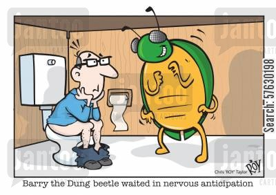 mensroom cartoon humor: Barry the dung beetle waited in nervous anticipation.