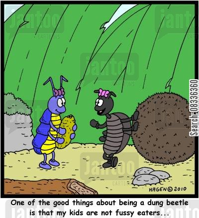 dung ball cartoon humor: 'One of the good things about being a dung beetle is that my kids are not fussy eaters...'