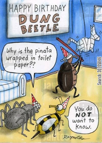 spider cartoon humor: Happy birthday Dung Beetle