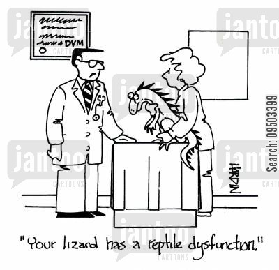 reptile owner cartoon humor: 'Your lizard has a reptile dysfunction.'