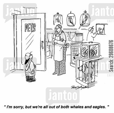 species cartoon humor: 'I'm sorry, but we're all out of both whales and eagles.'