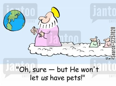 afterlife cartoon humor: 'Oh, sure -- but He won't let US have pets!'