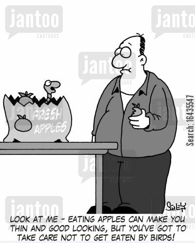 bird food cartoon humor: 'Look at me - eating apples can make you thin and good looking, but you've got to take care not to get eaten by birds!'
