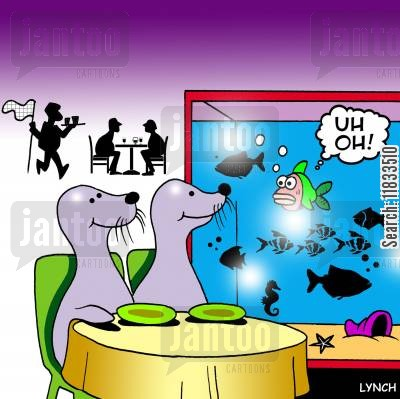 choosing fish cartoon humor: Seal dinners.