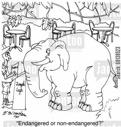 endangered species list cartoon humor: 'Endangered or non-endangered?'
