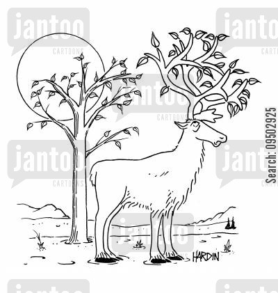 bloom cartoon humor: Deer with leaves growing from antlers.